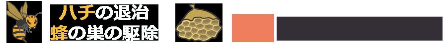 蜂の巣の駆除、ハチ退治出張業者ビーステーション