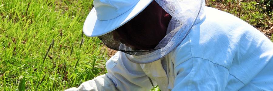 養蜂家ようの防護服でしょうか?顔の部分がネットになっています。通気性が良いと思いますが、スズメバチとは戦えません。スズメバチは毒液を飛ばして攻撃してくることがあります。